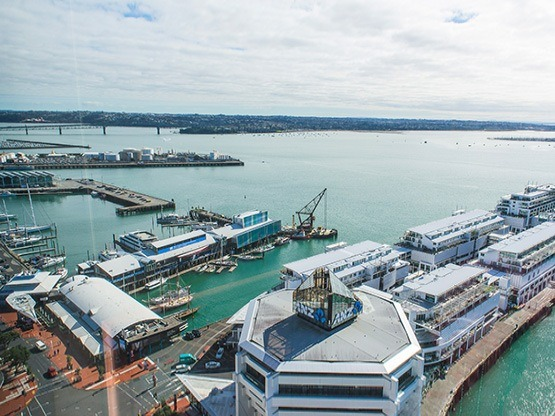 view-555x416-pwctower-auckland.jpg